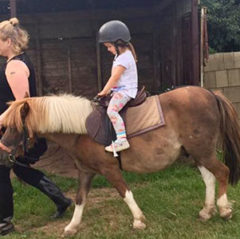 Hatton Adventure World Pony Rides Attraction