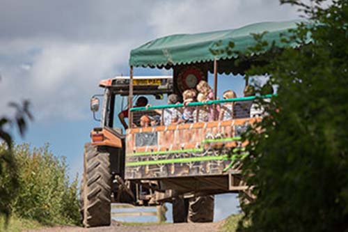 Hatton Adventure World Tractor Safari