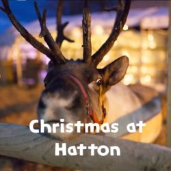 Christmas At Hatton