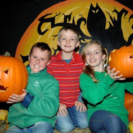 Hatton Halloween Pumpkins