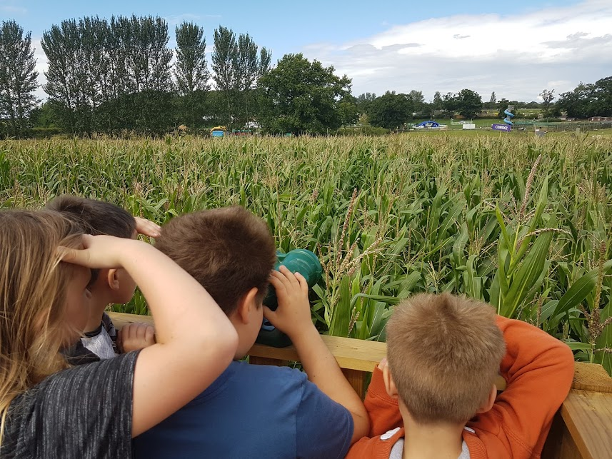 Hatton Maize Maze