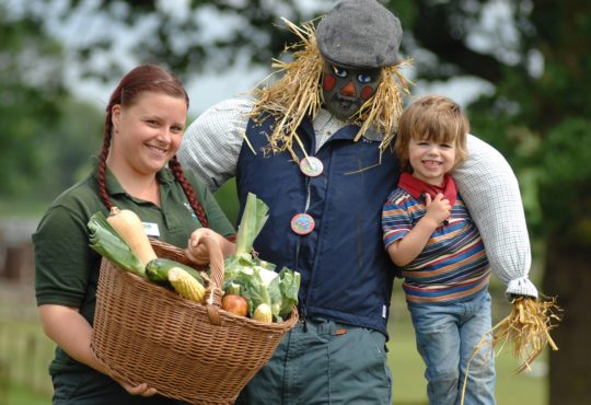 Hatton Scarecrow Building