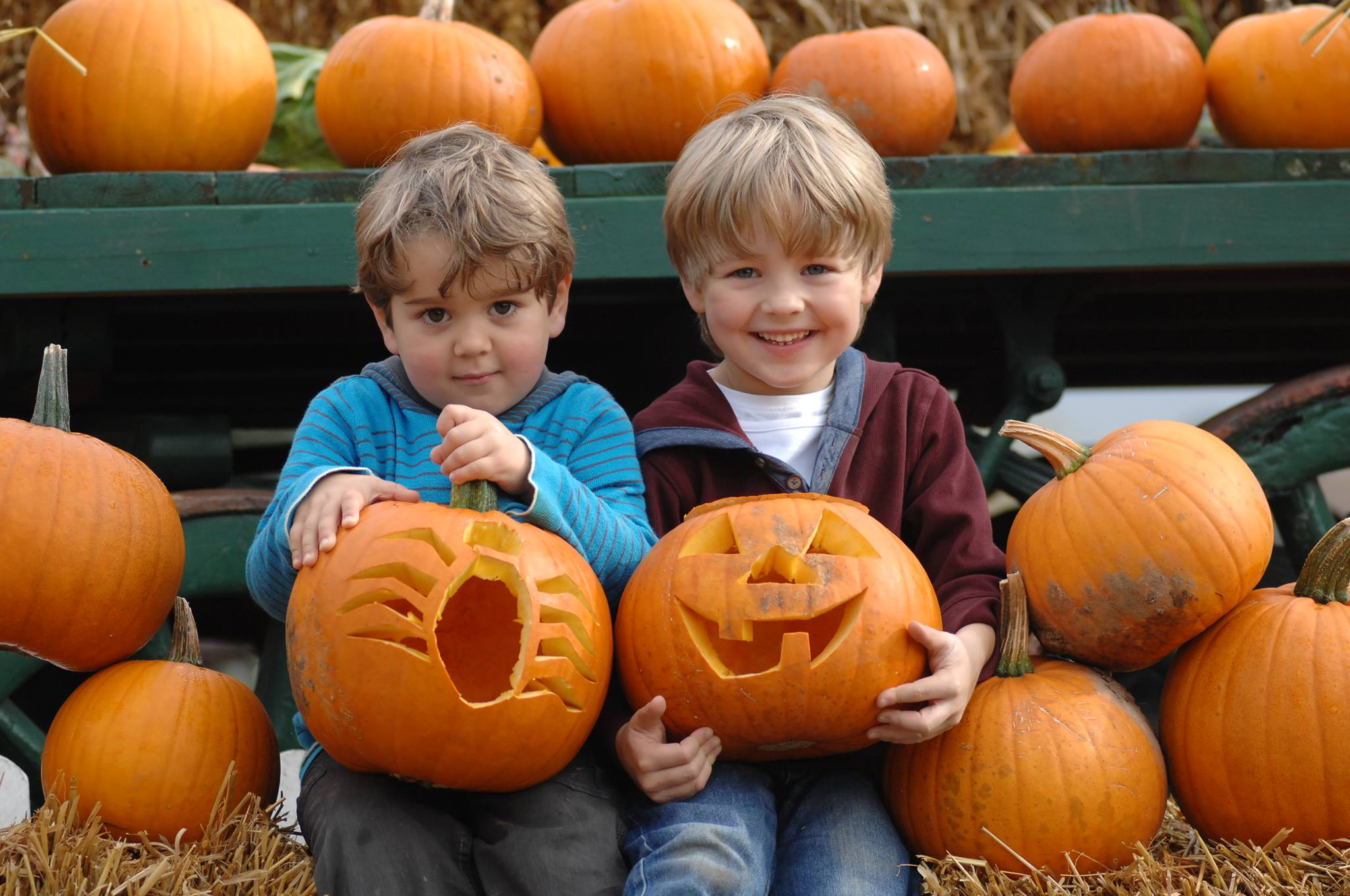 Hatton Pick Your Own Pumpkins