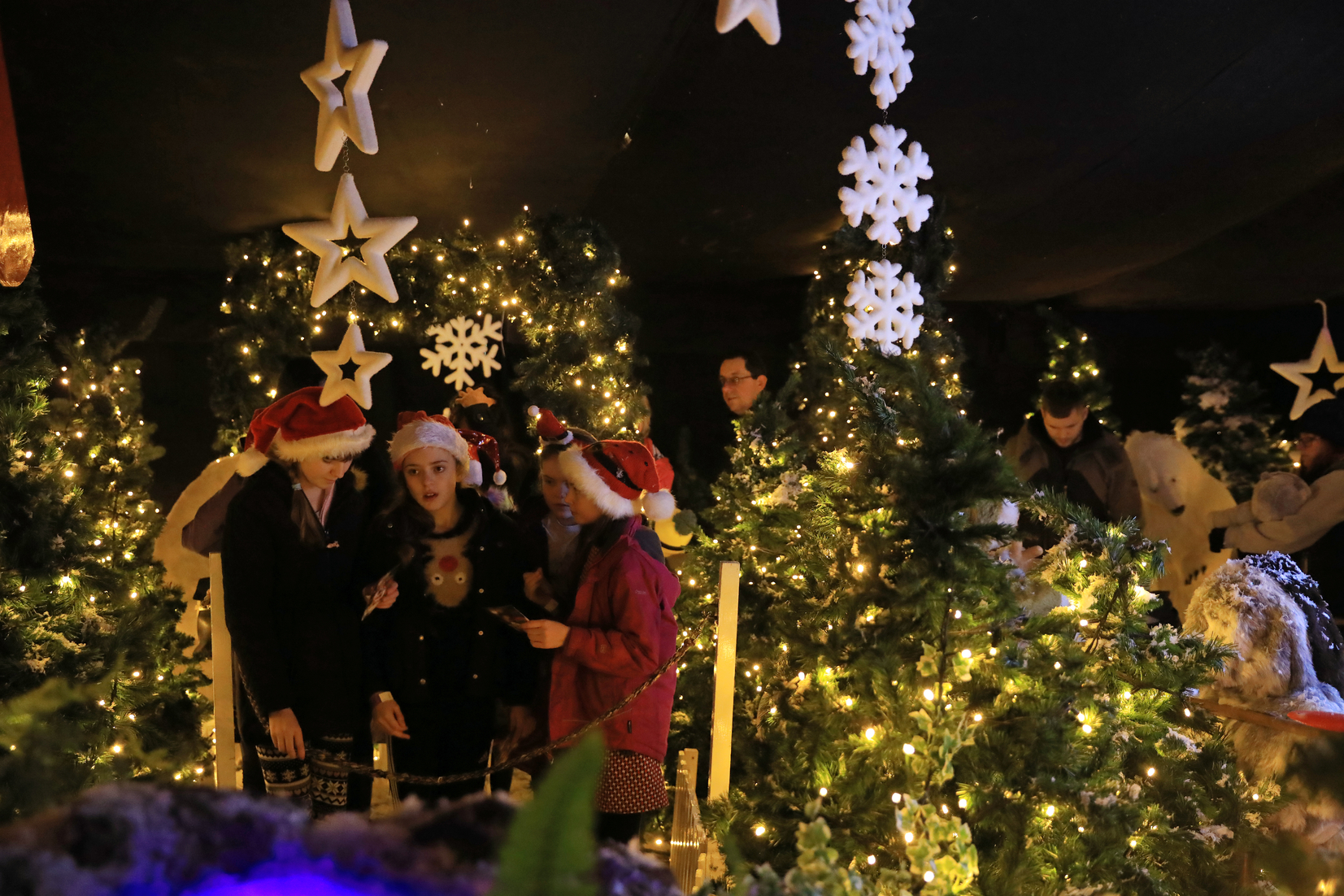 Enchanted Christmas.Festive And Magical Programmes For Christmas Weekends